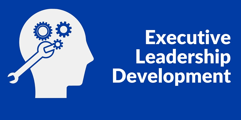 executive coaching, Executive Leadership Development